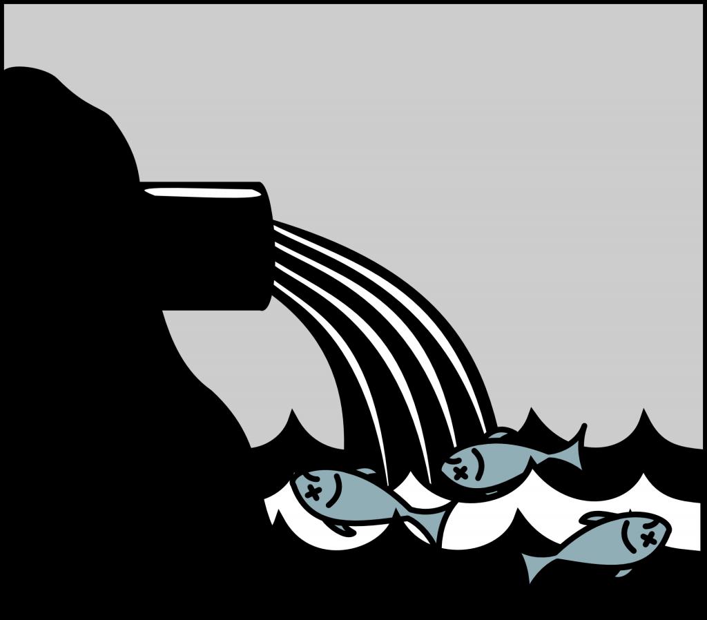 inquinamento fiumi da antibiotici